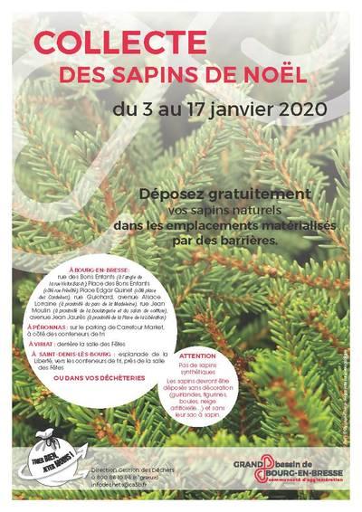Collecte Des Sapins De Noël Déchets